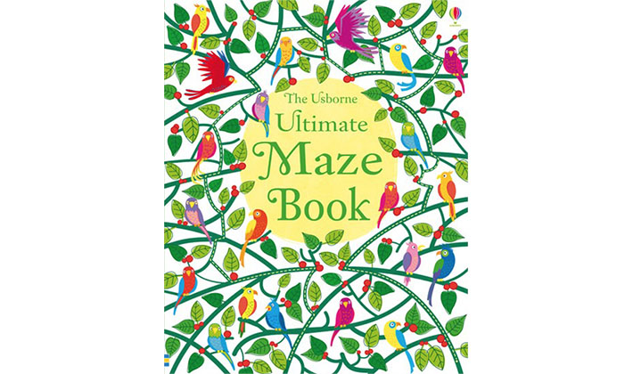 The Usborne Ultimate Maze Book